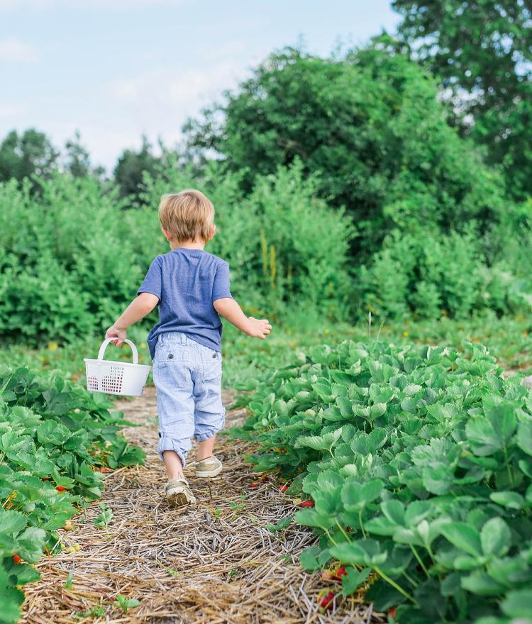 5 Organic Ways To Pass The Time With Your Kids