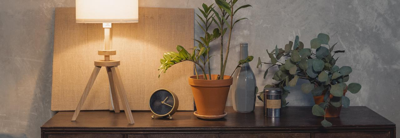 bedside table with plants lamp and essential oils