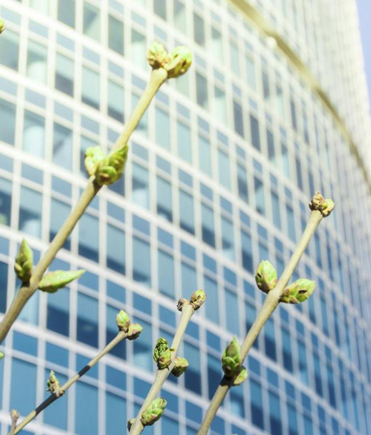 Business Resources to Help Create a Healthier Economy