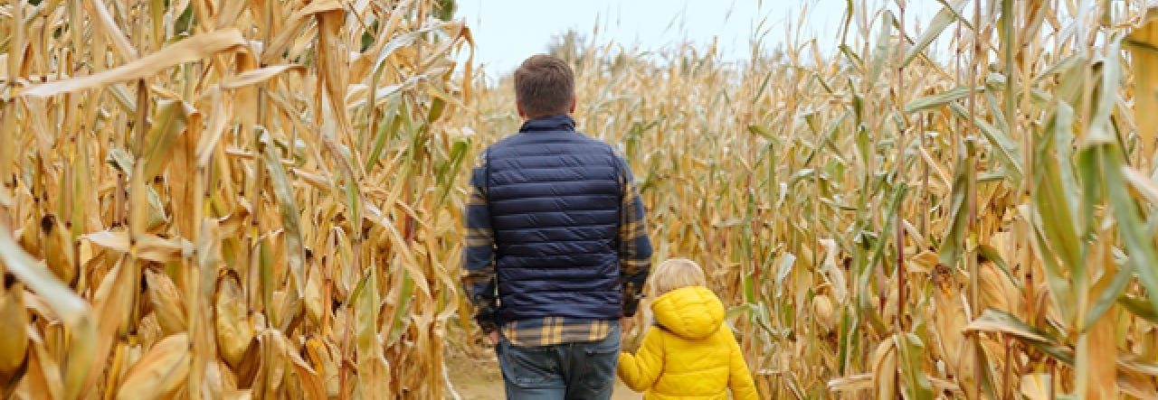 10 Organic Fall Activities the Whole Family Will Love