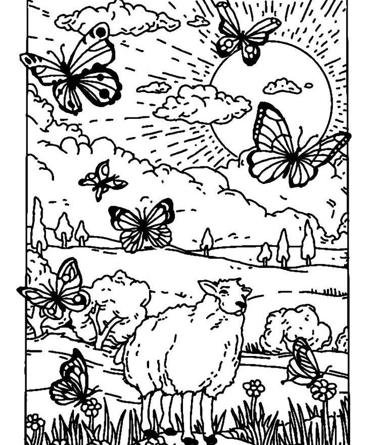 Naturepedic's Family Activity for National Coloring Book Day