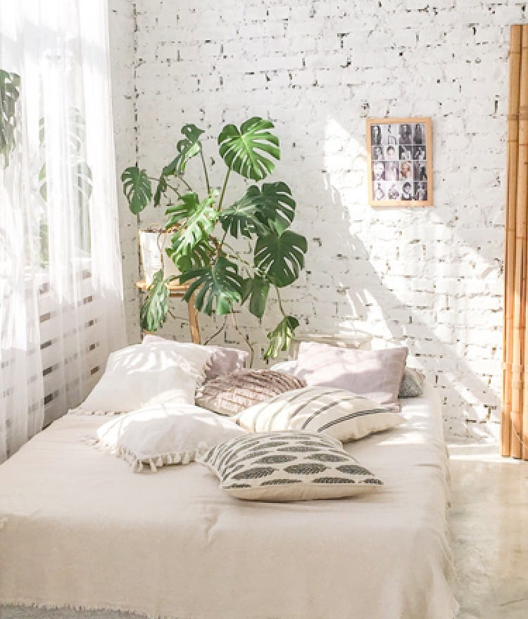 Our 5 Favorite Plants To Let Bloom In The Bedroom