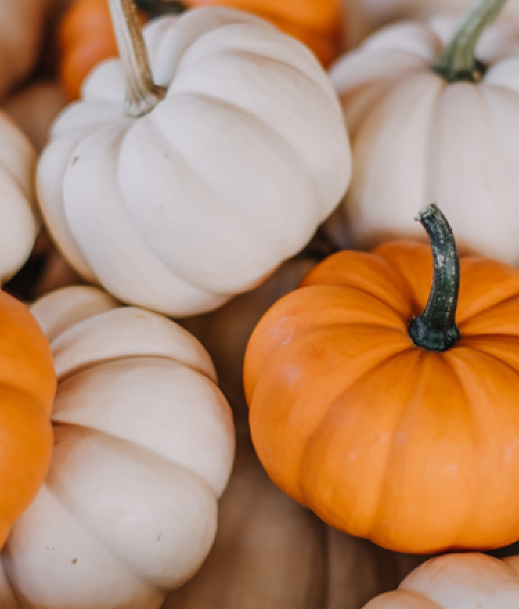 Creative Uses For Pumpkins You Probably Haven't Tried