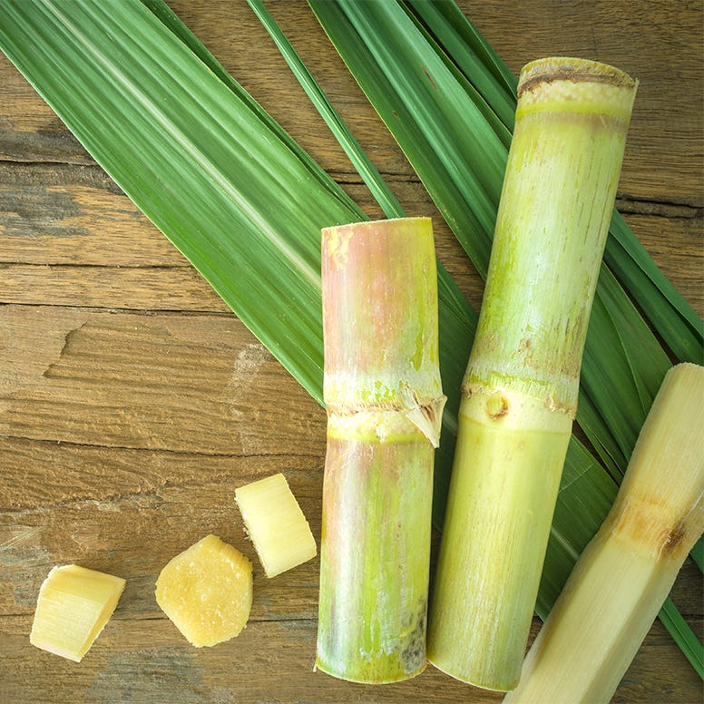 Pieces of raw sugar cane