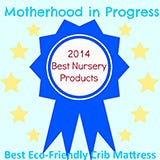 Motherhood in Progress Award