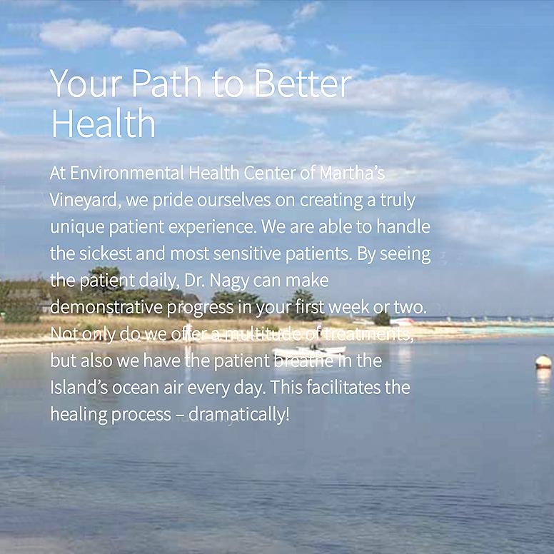 Screenshot from Lisa Nagy's website - Your Path to Better Health